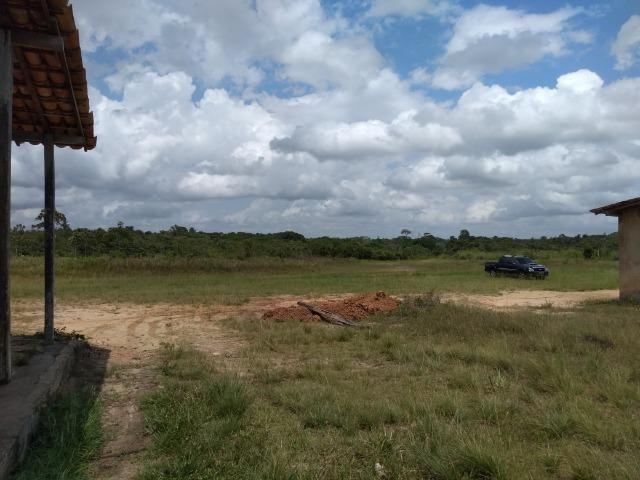 No Pará,175 hectares ha região de Castanhal-Pará por 1.400.000,00 documentada - Foto 14