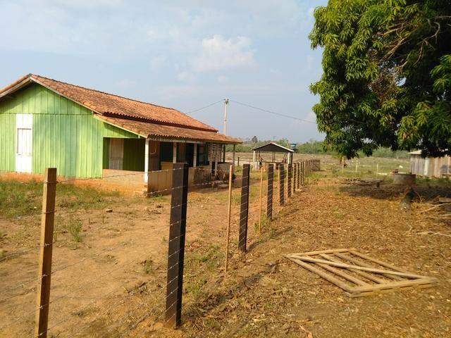 Vendo uma chácara em Alto Alegre Telefone para contato 984318501ou zap 993261225 - Foto 10