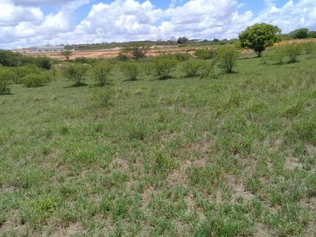 Excelente área de terra às margens da BR 116, com 614.196m - Foto 12