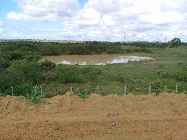 Excelente área de terra às margens da BR 116, com 614.196m - Foto 5