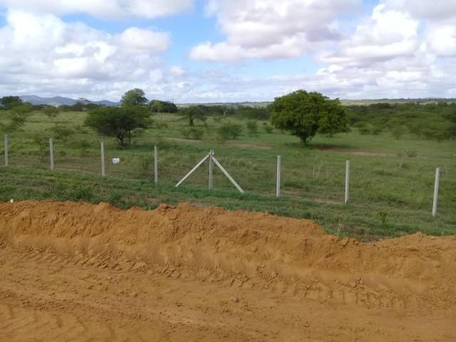 Excelente área de terra às margens da BR 116, com 614.196m - Foto 6