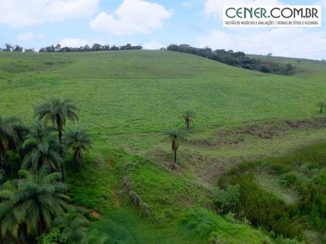 1870/Ótima fazenda de 480 ha extremamente bem localizada entre Congonhas e Lafaiete - Foto 2