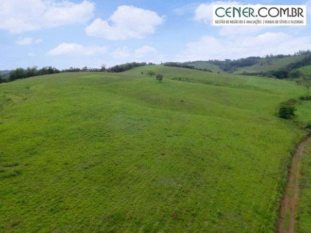 1870/Ótima fazenda de 480 ha extremamente bem localizada entre Congonhas e Lafaiete - Foto 6