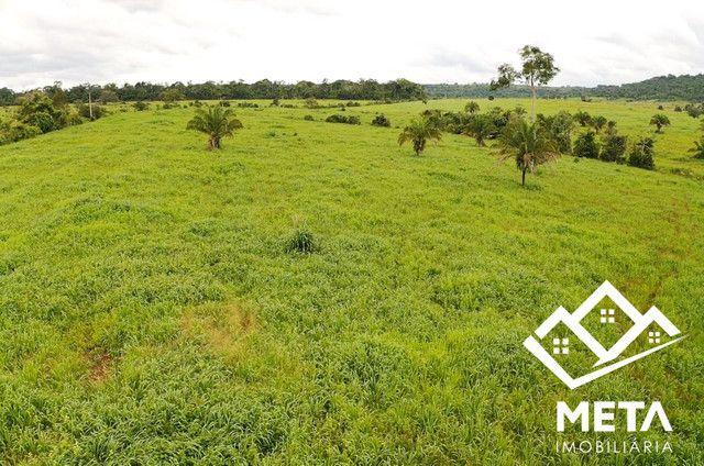 Fazenda Rondonia / parecis / pimenta Bueno. - Foto 11