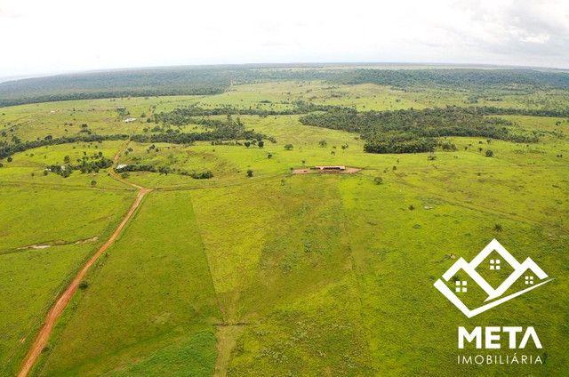 Fazenda Rondonia / parecis / pimenta Bueno. - Foto 5