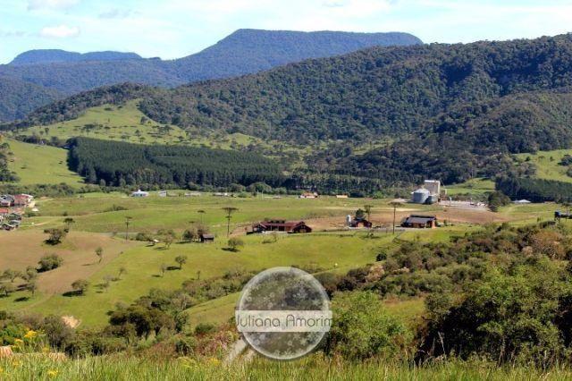 Terreno as margens da BR 282 em Bom Retiro - Foto 12