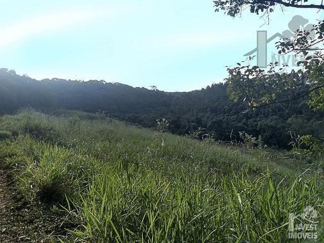 CÓD 3393 Terreno 39 alqueires com plantio e nascentes a 90 km de SP