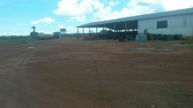 Fazenda de 16.250 Alqueires Paulista, Na Região de Confresa MT - Foto 14