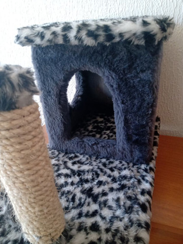Casa de Gato nova  - Foto 3
