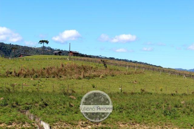 Terreno as margens da BR 282 em Bom Retiro - Foto 2