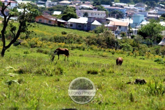 Terreno as margens da BR 282 em Bom Retiro - Foto 14