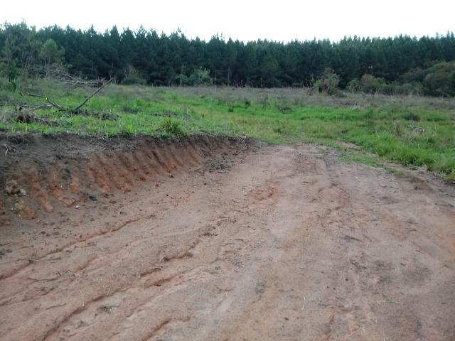 Terreno em lagoa dos ferreiras Mandirituba 24.200m 1 alqueire - Foto 17
