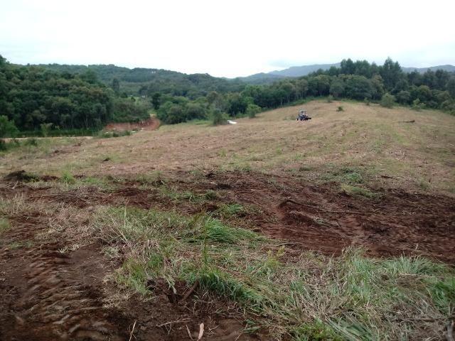 Terreno em lagoa dos ferreiras Mandirituba 24.200m 1 alqueire - Foto 14