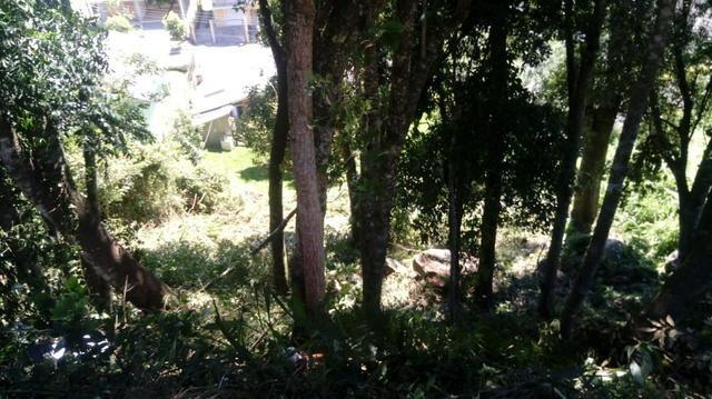 Terreno em Gramado - 12x25 - próx ao centro - Foto 2