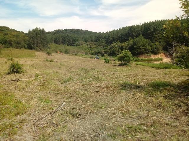 Terreno em lagoa dos ferreiras Mandirituba 24.200m 1 alqueire - Foto 15