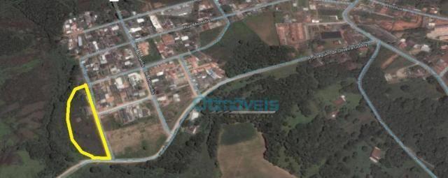 Área à venda, 9087 m² por r$ 1.740.000,00 - campina da barra - araucária/pr - Foto 7