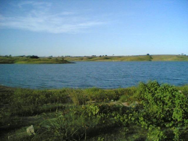 Cumaru=Vend. 15 mil p-Hect. Fazenda =Casa,Energia,Água,Piscina e muito mais - Foto 18