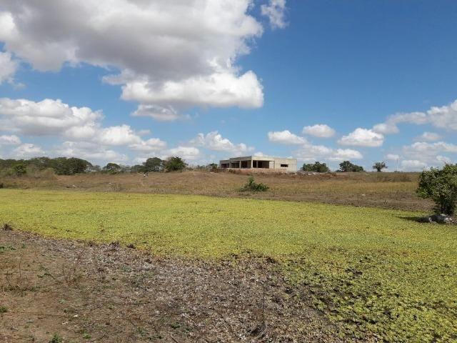 Cumaru=Vend. 15 mil p-Hect. Fazenda =Casa,Energia,Água,Piscina e muito mais - Foto 17