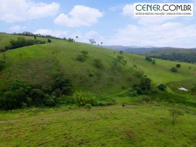 1870/Ótima fazenda de 480 ha extremamente bem localizada entre Congonhas e Lafaiete - Foto 7