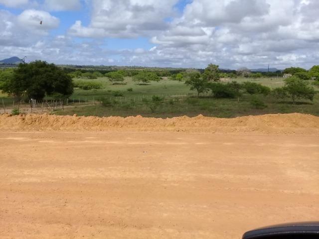 Excelente área de terra às margens da BR 116, com 614.196m - Foto 16