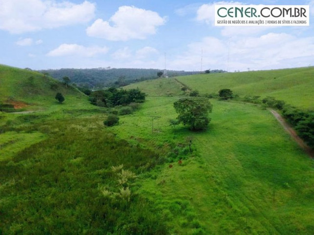 1870/Ótima fazenda de 480 ha extremamente bem localizada entre Congonhas e Lafaiete - Foto 8