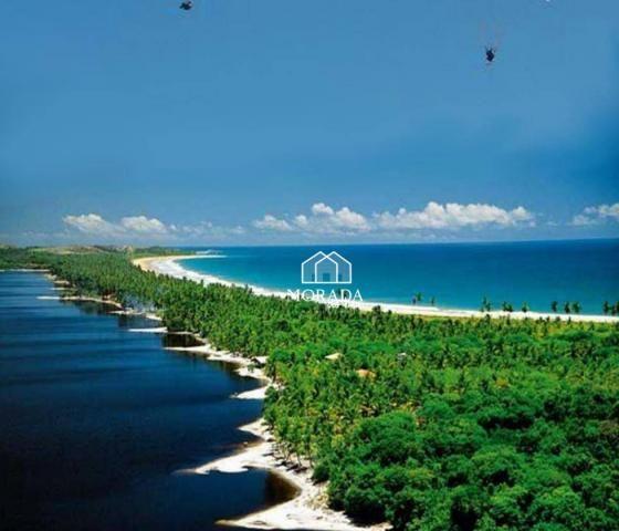 Terreno à venda, 40.920m² por R$ 690.000 - Barra Grande - Maraú/BA