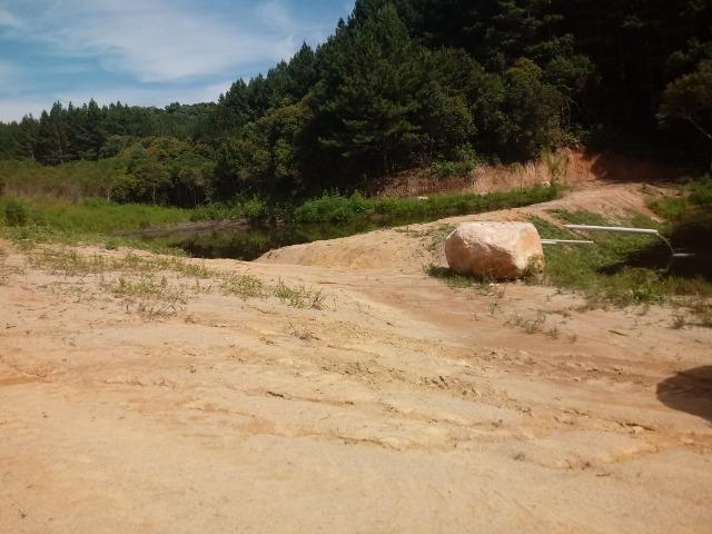 Terreno em lagoa dos ferreiras Mandirituba 24.200m 1 alqueire - Foto 11