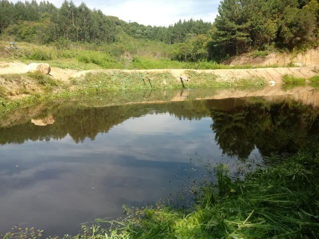 Terreno em lagoa dos ferreiras Mandirituba 24.200m 1 alqueire - Foto 5
