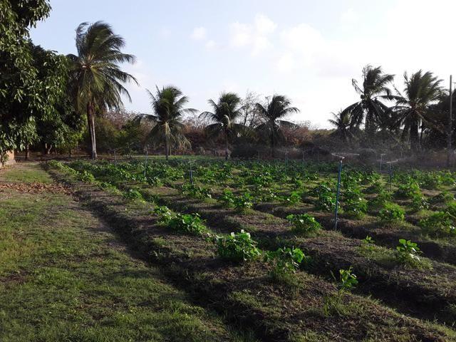 Sítio no Iguaiba - Foto 7