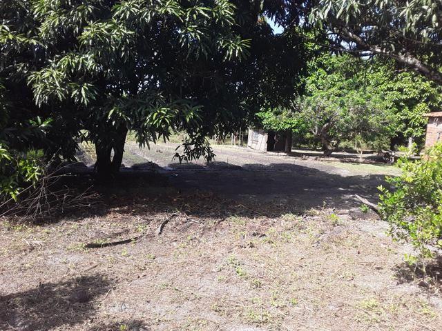Sítio no Iguaiba - Foto 6