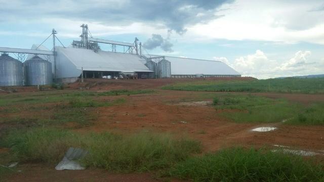Fazenda de 16.250 Alqueires Paulista, Na Região de Confresa MT - Foto 9