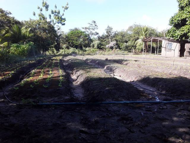 Sítio no Iguaiba - Foto 3