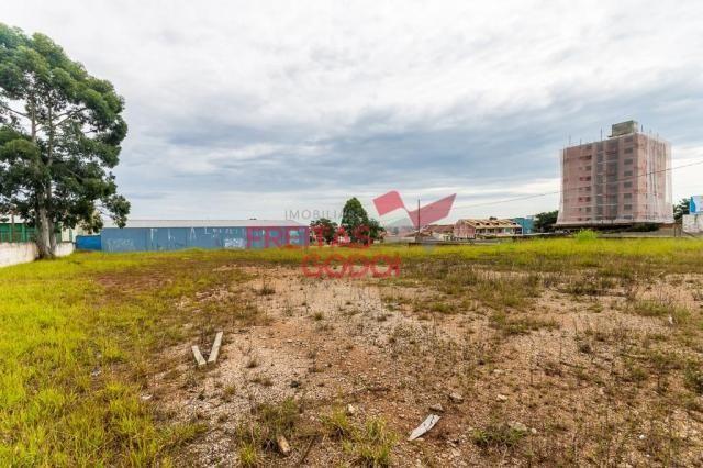 Terreno para alugar no Centro - Pinhais/PR - Foto 8