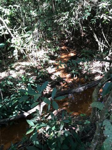 Chácaras com Córrego em Caldas Novas - Foto 13