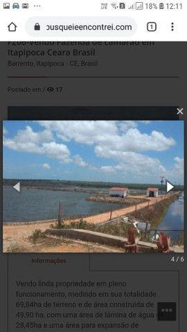 FZ00- Vendo Fazenda Camarão Itapipoca Ceara  - Foto 16