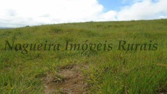 Fazenda com 450 alqueires em Juquiá, oportunidade para pecuária (Nogueira Imóveis Rurais) - Foto 8