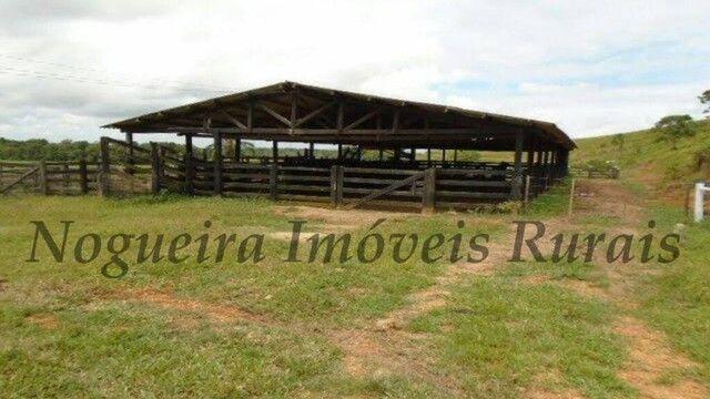 Fazenda com 450 alqueires em Juquiá, oportunidade para pecuária (Nogueira Imóveis Rurais) - Foto 2