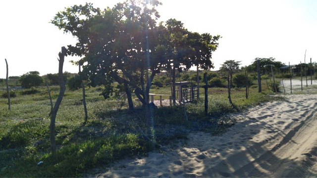 Terreno em Barreirinhas-Ma - Foto 3
