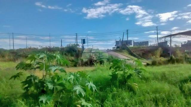 Terreno à venda em Atuba, Curitiba cod:152877 - Foto 4