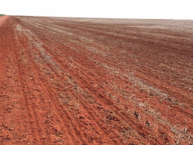 1900 Hectares, 1800 hectares lavoura, lavoura soja e algodão, Diamantino ?MT - Foto 5