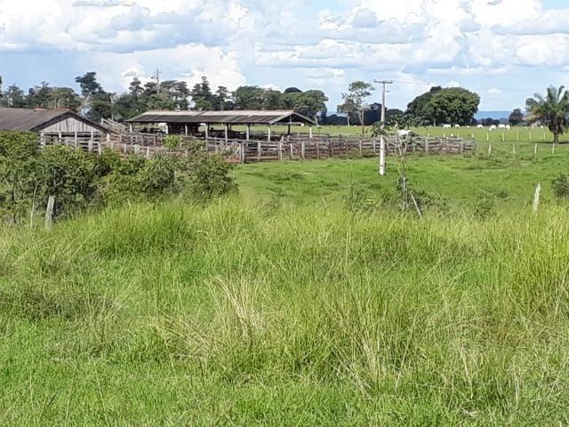 Fazenda em Arenapolis Mato Grasso Terra de Cultura - Foto 11