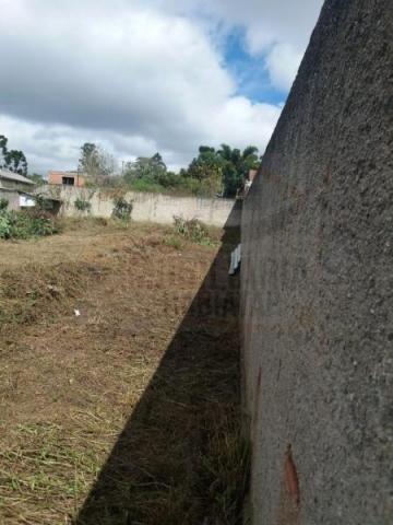 Terreno para venda em quatro barras, jardim das acácias, 2 dormitórios, 1 banheiro - Foto 12