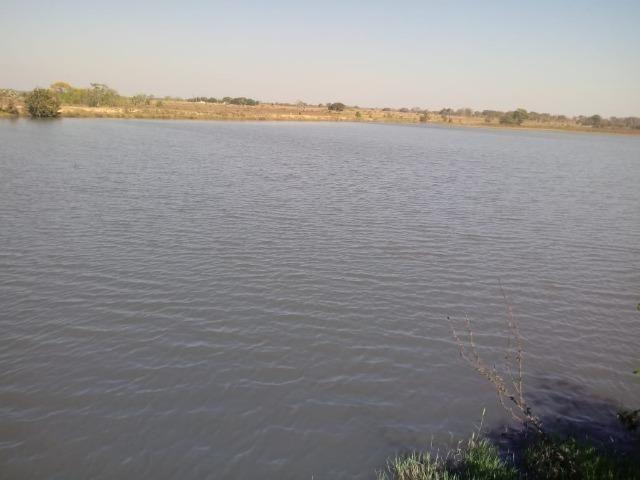 Fazenda em Livramento há 44 km Cuiabá com piscina, muito pasto, represas e lago - Foto 12