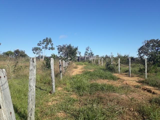 Fazenda em Rosário Oeste com 784 Hectares - Foto 11