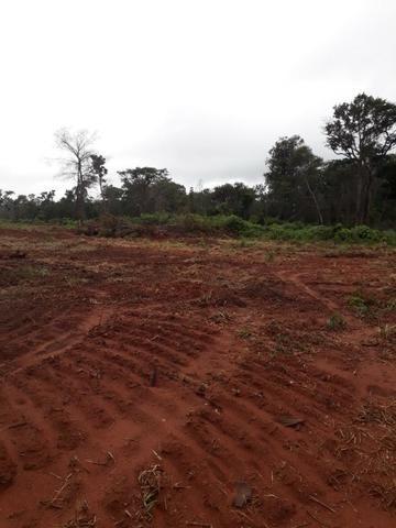 Fazenda de 750 Hectares ?Nova Maringá-MT, Troca imóveis em Campo Novo, Tangara - Foto 5