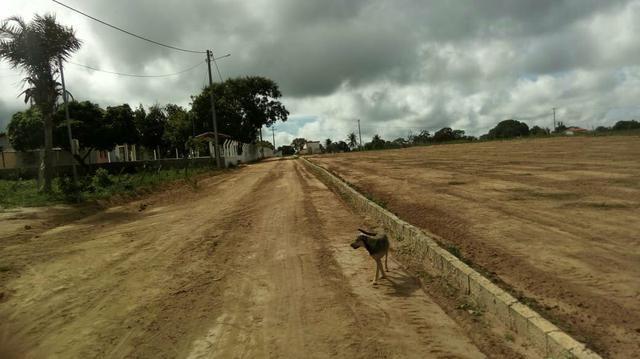 Novo loteamento em tiquaruçu - Foto 4