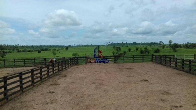 Fazenda à venda, por R$ 40.000.000 - Zona Rural - Rolim de Moura/RO - Foto 15