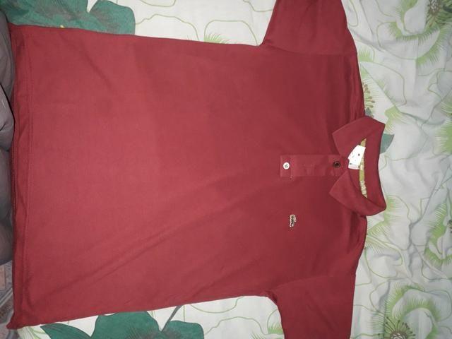 d7e48c7a148 Camisa Lacoste (Gola Polo) - Roupas e calçados - Santa Rita
