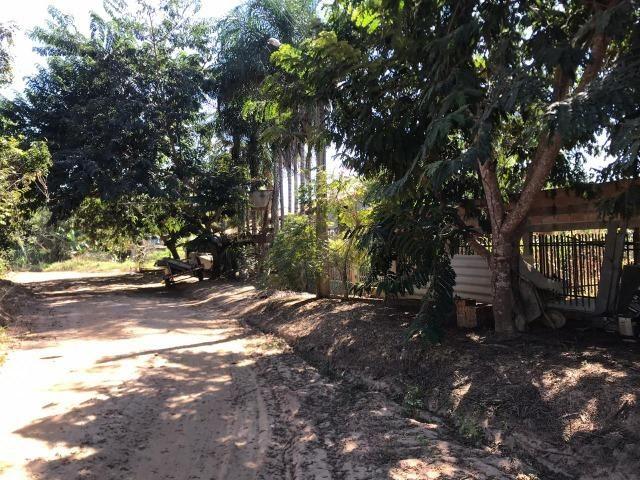 Chácaras com Córrego em Caldas Novas - Foto 4