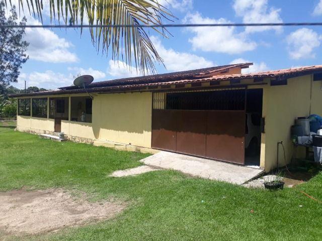 3.82 hectares a 12 km de Castanhal por 220 mil reais Documentada - Foto 6